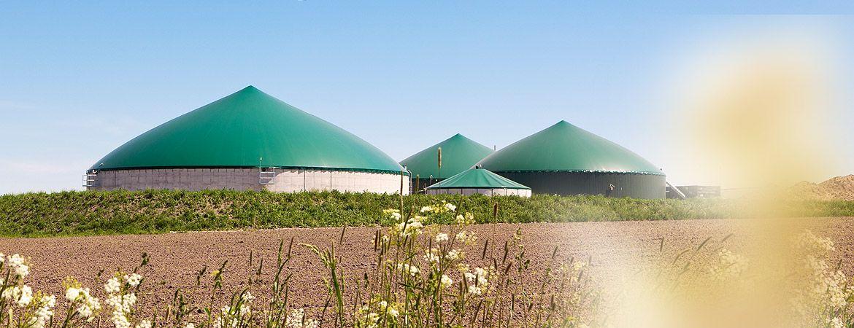 Bio oil production plant